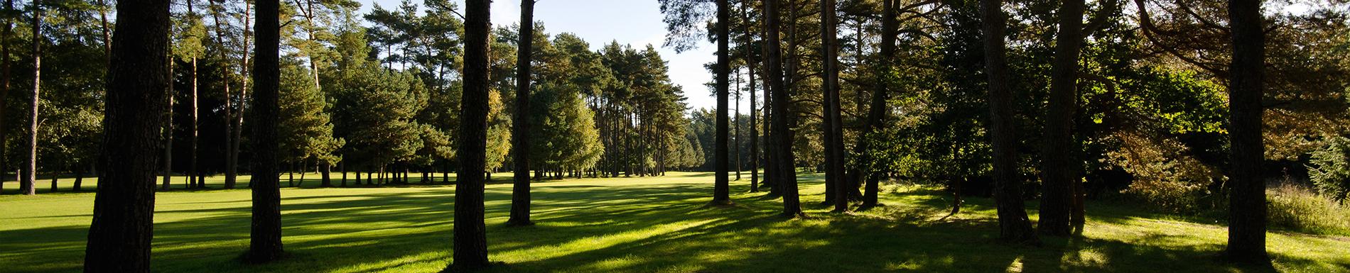 20130929_golfclub_worpswede-53-header
